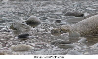 Raindrops on water surface. Stones in stream of Sochi river flowing from mountains through city. Sochi, Russia.