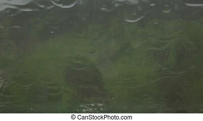 Raindrops on window glass flows in continuous streams. Slow motion