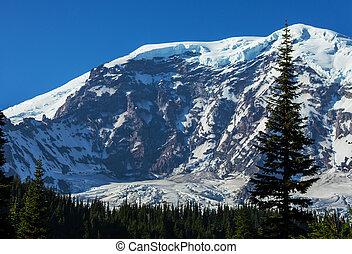 Mt.Rainier