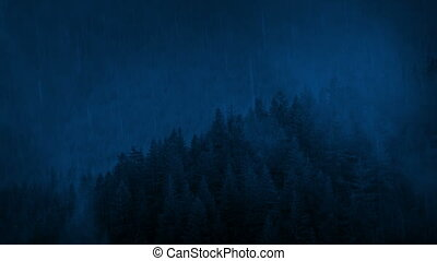 Rainfall On Misty Forest Hillside At Night - Forest...