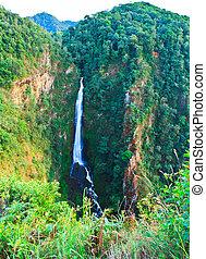 rainforest, タイ, surin, 滝, mae