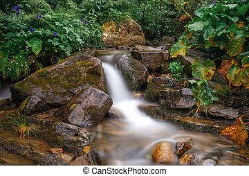 rainforest, 高く, 川, 山, stream.