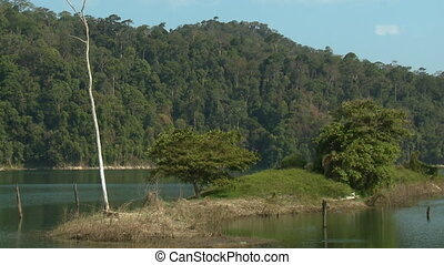 Rainforest Landscape, Temenggor Lake, Malaysia - Wide...