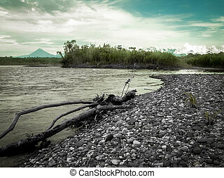 Rainforest River And Mountain