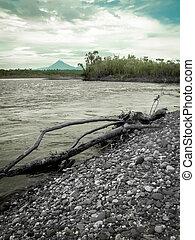 Rainforest River And Mountain Portrait