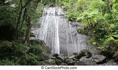Rainforest waterfall in El Younque national park, Puerto rico
