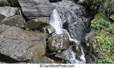 Rainforest waterfall Puerto rico - Rainforest waterfall in...