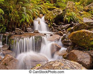 rainforest waterfall - A rainforest waterfall in lush...