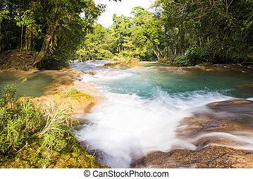 Rainforest Waterfalls Of Agua Azul