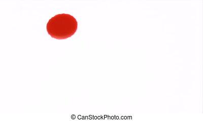 Raining Blood - Canon HV30. HD 16:9 1920 x 1080 @ 25.00 fps....