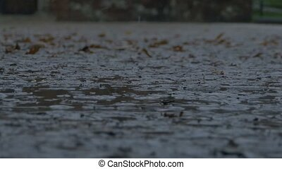 Raining on Muddy Pavement - Drops of raining splashing on a...