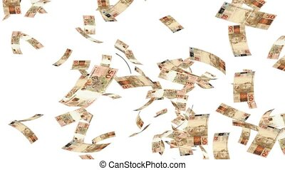 Raining Reales - rain,money,cash,reales,currency,wealth