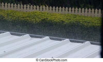 Raining Roof 1 - Rain pouring onto a corrugated aluminium...
