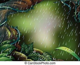 Raining scene in the deep forest