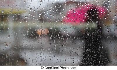 Rainy city umbrellas.