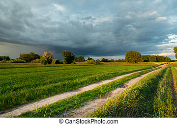 Rainy cloud and rural road through the fields