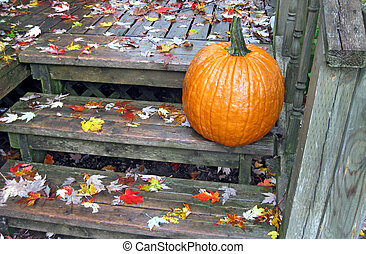 Rainy Day - A pumpkin and fallen leaves on a rain-soaked...
