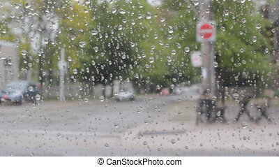 Rainy day from inside car.