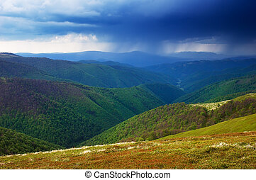 Rainy day in the mountains - Spring landscape. Rainy day. ...