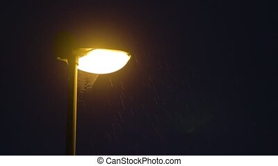 Rainy night. Solitary Lamppost - Rainy night and a solitary...