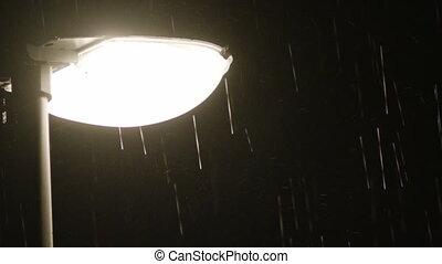 Rainy night. Solitary Lamppost