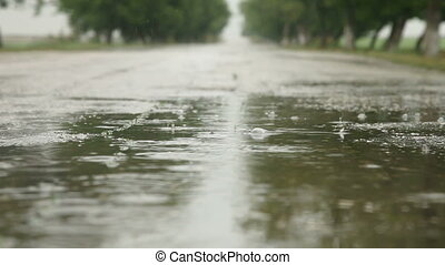 Raindrops In Road Puddle, Surface Level
