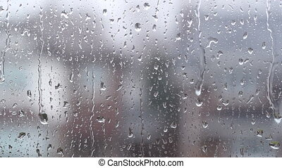 Rainy suburban window.