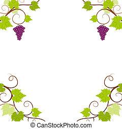 raisin, frame., vignes