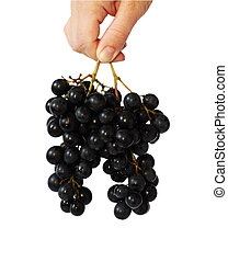 raisin, nahd, vigne