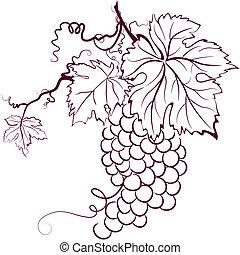 raisins, à, feuilles