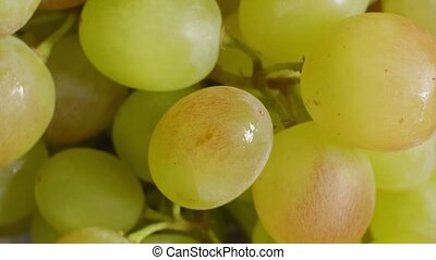 raisins, délicieux, foyer, mûre, gros plan, doux