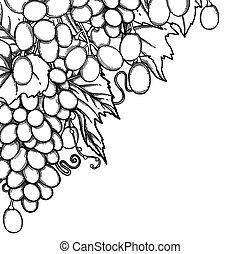 raisins, graphique, tas, branche, pendre