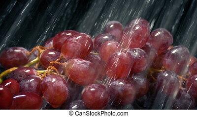 raisins, pulvérisation, lavé, eau, obtenir, rouges