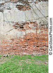 raiz, madeira, coberto, parede tijolo