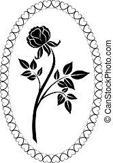 rajz, fekete, vektor, illustration., rózsa, fehér