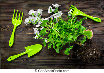 rake, trowel, ground and greenary for gardening on wooden background top view