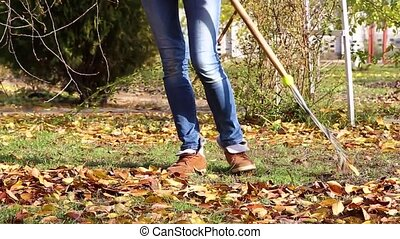 raking autumn leaves - rake autumn leaves from a...