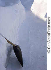 Raking away the snow in the garden. The shovel stands at a high snowdrift. There is a lot of snow in the garden in winter. Vertical photo.