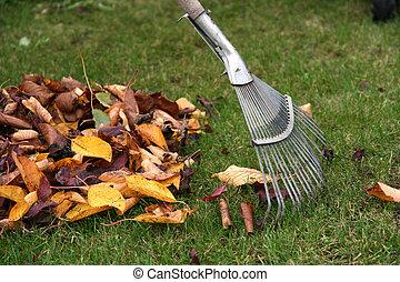 Raking autumn leaves, gardening during the holidays (horizontal)