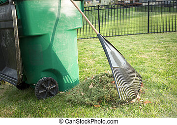 Raking up grass cuttings in spring during yard maintenance ...