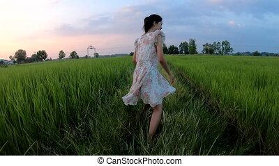 ralenti, champ, courant, coucher soleil, girl, riz