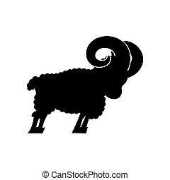 ram farm animal isolated. Horned Sheep beast