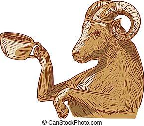 ram, goat, 飲む コーヒー, 図画