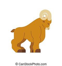 Ram isolated. Horned sheep. Farm animal vector illustration