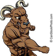 Ram mascot fighting