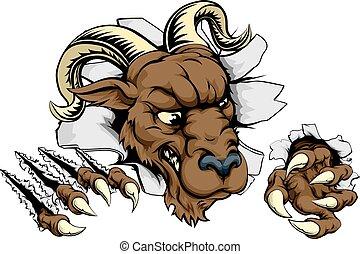 Ram ripping through background - Ram sports mascot...