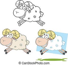 Ram Sheep Collection Set