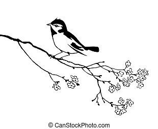 rama, árbol, pájaro, vector, silueta
