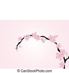 rama, aislado, en, rosa