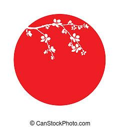 rama, de, hermoso, flor de cerezo, en, círculo